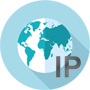 Domain to IP Lookup
